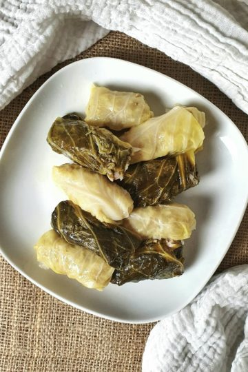 aerial shot of stuffed cabbage on white plate